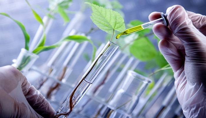 1986-application-of-biotechnology-in-medical-and-agricultural-sectors