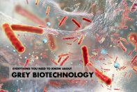 Everything You Need To Know About Grey Biotechnology